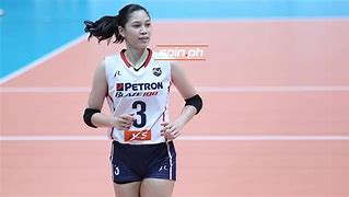 Job:  Volleyball Player